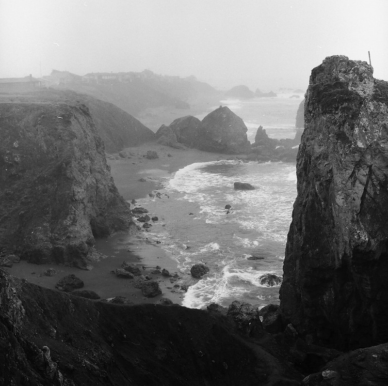 Foggy Coast 365-5  2-11-79