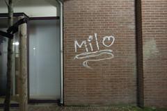 Milo graffiti in Delft