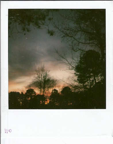 polaroid 600film