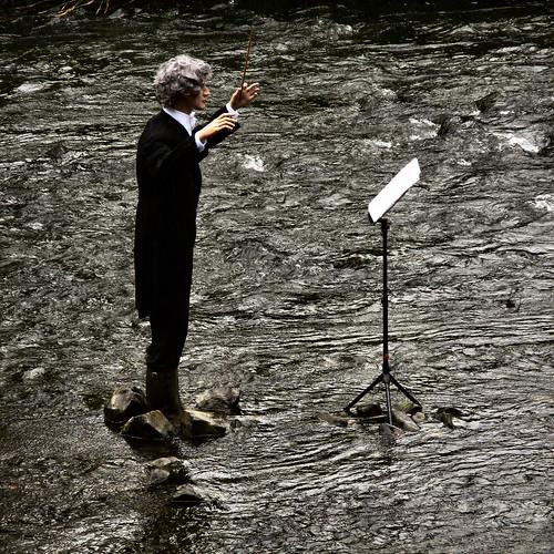 conducting a fish concert
