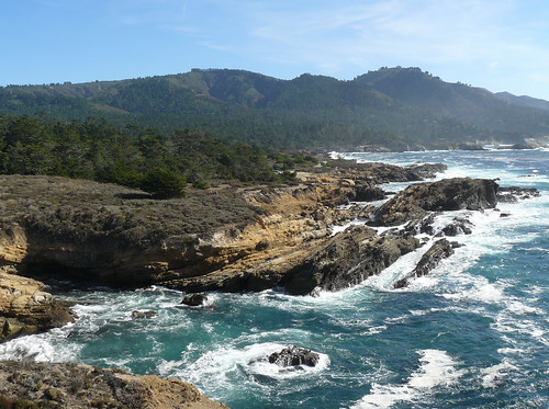 Point Lobos State Reserve   by docentjoyce