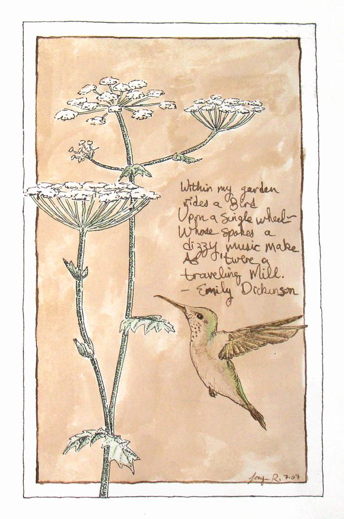 Hummingbird Poems 3