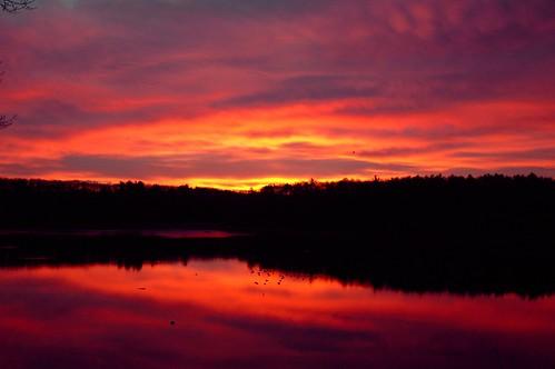 morning trees shadow red sky orange reflection water yellow sunrise waterfront narragansettbay eastgreenwich greenwichcove eastgreenwichcove