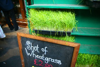 Borough Market Wheatgrass | by Commonorgarden