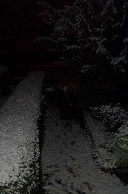 elgin_in_the_snow_6