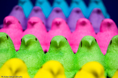 An Army of Peeps | by Island Capture (aka Silverph or psilver)
