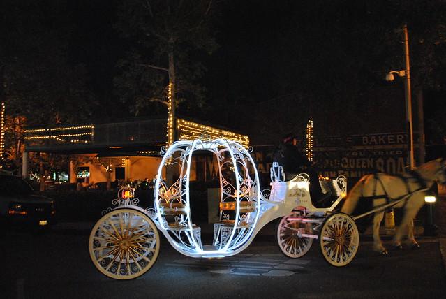 Horse-LED Carriage