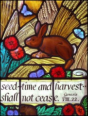 seed-time and harvest shall not cease