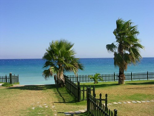 Palms Rhodes | by karolajnat