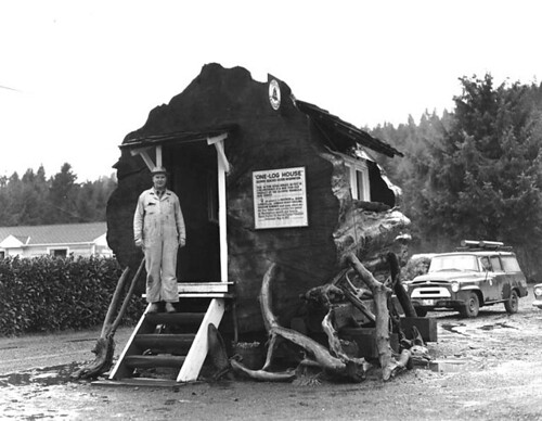 Stump house known as the One-log House, Hoquiam, Washington | by UW Digital Collections