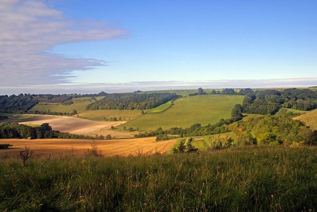 walbury hill1 | highest hill in berkshire | roy Leader | Flickr