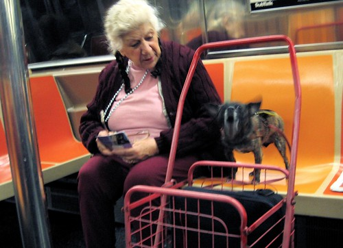 A dog on the subway.
