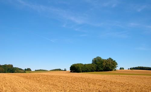 trees sky field landscape himmel landschaft bäume acker scherneck