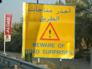 UAE Beware of road surprises   by woody1778a