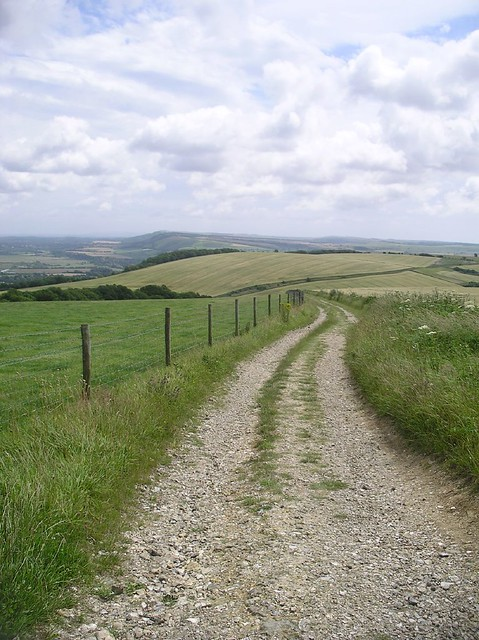 Book 3, Walk 39, Amberley to Pulborough Near Toby's Stone, on the South Downs Way, 14 July '07