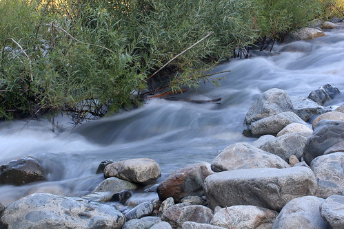 longexposure bridge 20d water leaves rock canon river photo leaf rocks stream south fork photograph covered yuba yubacounty explorer219 familygetty