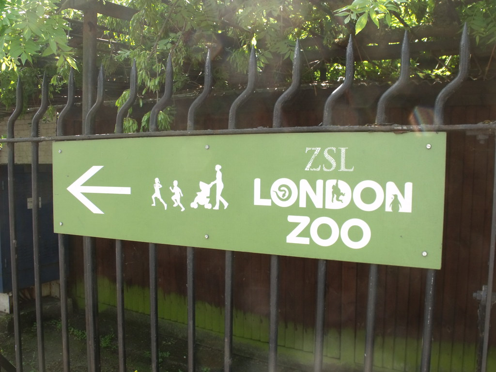 This way to London Zoo - sign on Prince Albert Road
