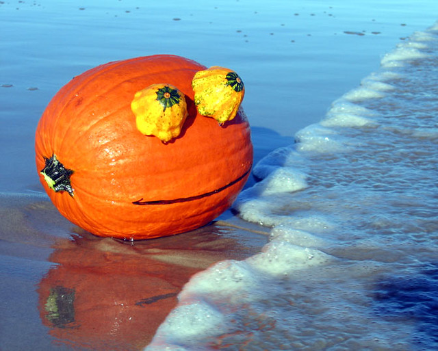 Pumpkin on the Beach - Rupert Pumpkin Beach