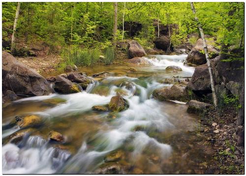 water southdakota blackhills creek landscape spring adobephotoshopelements canonefs1755mmf28isusm canoneos50d ortoneffect exposurefusion adobephotoshopelements7
