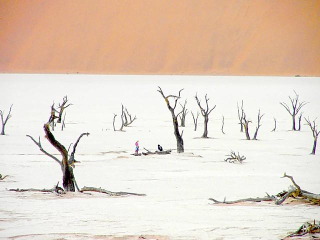 Namibian desert - another World