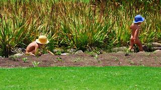 Kirstenbosch Gardens | by slack12