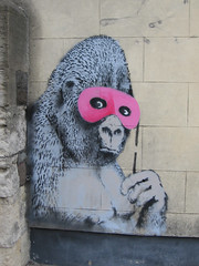 gorilla in pink | by pshab