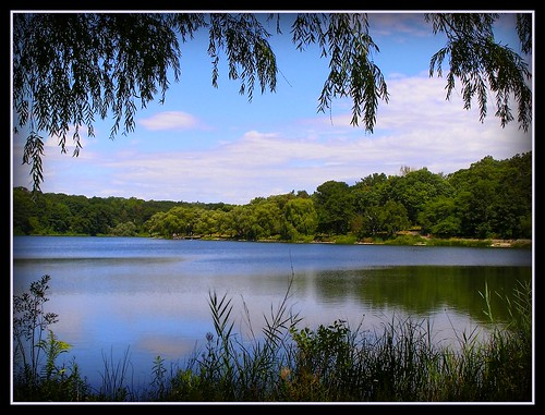 "willow pond clouds trees water reflection grenadierpond blue ""masterclass"" theunforgettablepictures miasbest daarklands legacy daarklandsexcellence trolledandproud thesuperbmasterpiece awardtree art manipulation tistheseason magiktroll ultramodern"