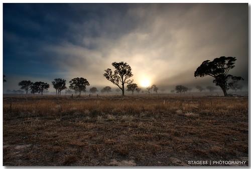 morning sky sun tree fog sunrise harrison australia canberra hdr photomatix gungahlin explored 450d redbubble canon1022mm3545