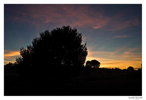 landscape paisaje fuensanta