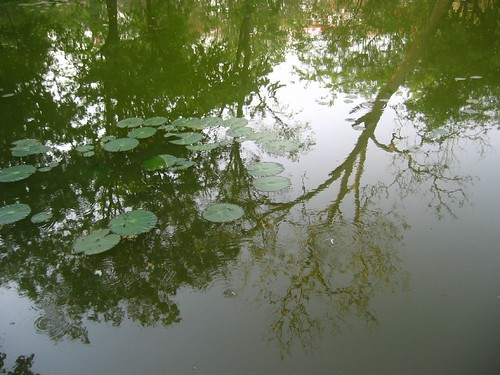 Lotus Sans Lotus.