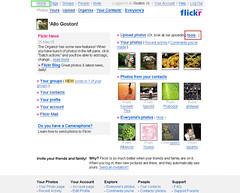 flickr_42