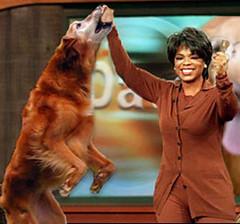 Oprah_Attack_Wookie
