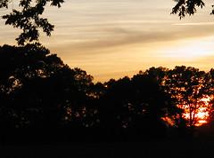 cool sunset 3