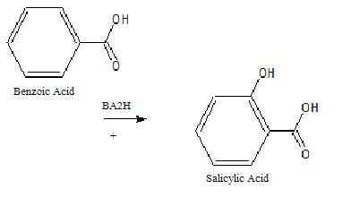 Benzoic acid to salicyclic acid