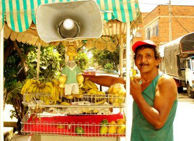 banano criollo 500 pesos la docena moras guayabas aguacates mangos el bananito criollo llévelo llévelo