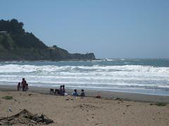 Surf Back Home