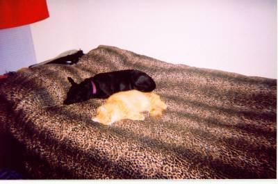 Kayla and Oliver