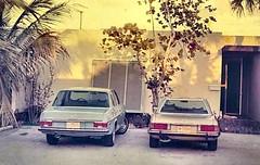 copycat cars