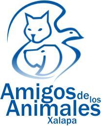 Amigos de los Animales AC Xalapa
