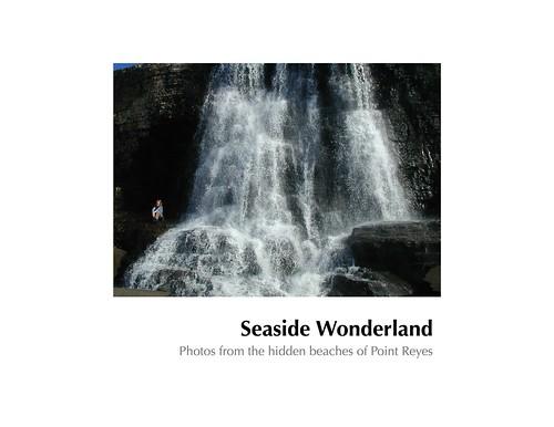 SeasideWonderland book