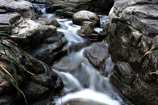 Water Blur | by CameraOne