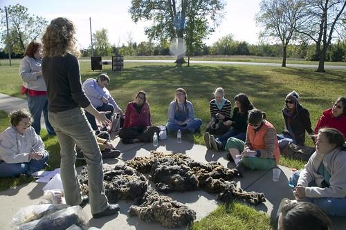 Yarn School: raw fleece