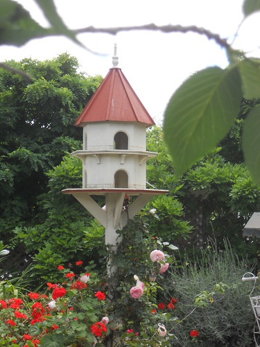 Bird House | by mikecogh
