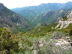 Arrivée au col 971 m : la vallée du Peralzone et la crête remontée