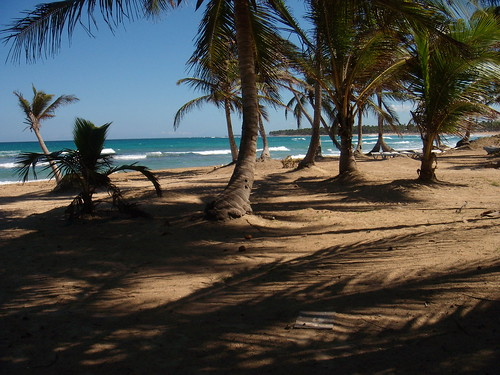 deserted beach near punta cana, DR | by goat.pirate