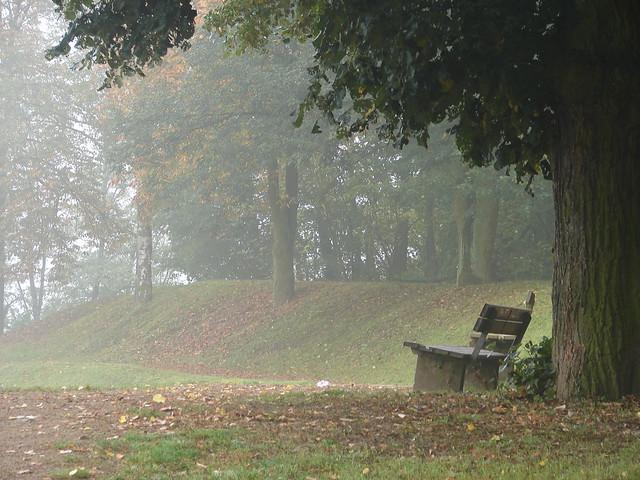 Misty hill in Trier