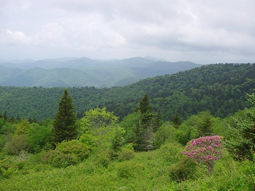 blue north ridge parkway carolina 430 nantahalanationalforest highestpoint richlandbalsam coweemountainsoverlook netbros internetbrothers