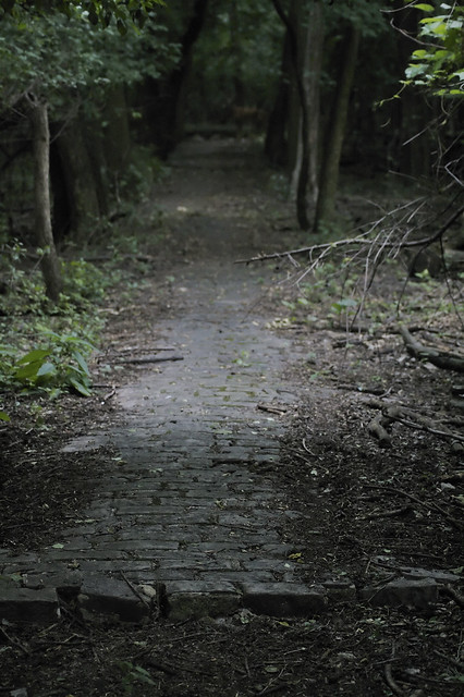 an open path