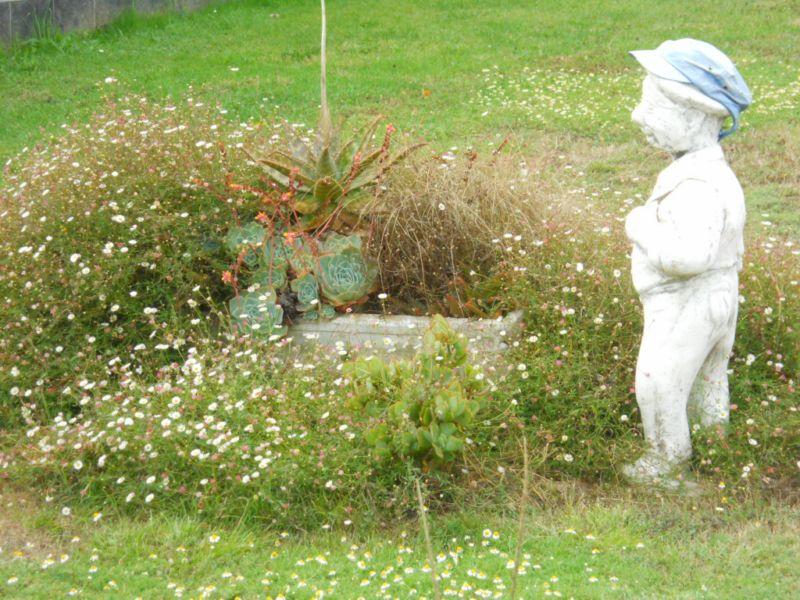 Enanito de jardín