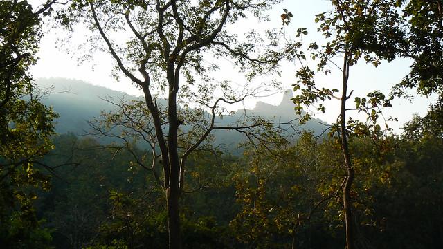 Karnala fort in background